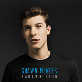 Shawn Mendes: not the Life Of The Party