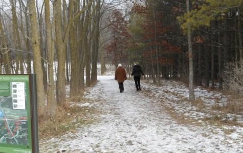 Forest preserves offering lit up trails