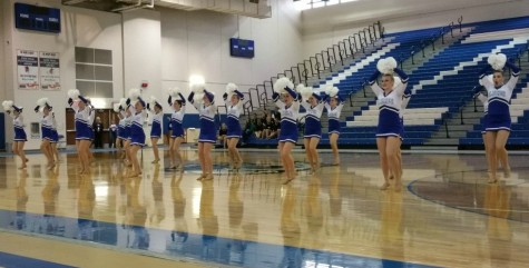 Poms takes third place at IHSA competition