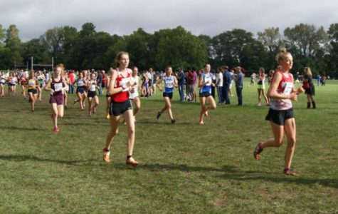 Boys and girls cross country teams travel to Peoria Invitational