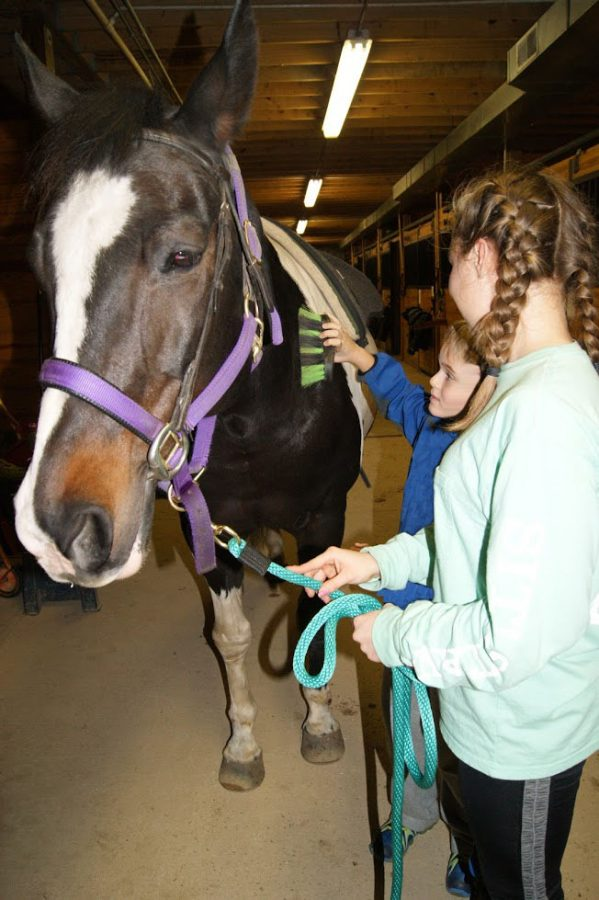 Lizzie Kalafut, freshman, helps a rider at Partners for Progress brush his horse. Kalafut started volunteering last winter because of her love for kids and horses.
