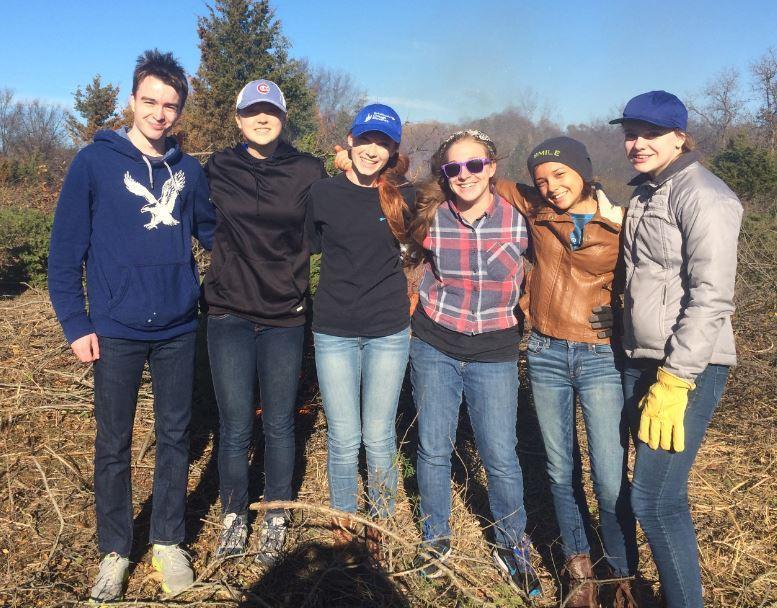 REACT club volunteering at Cuba Marsh by removing invasive species.