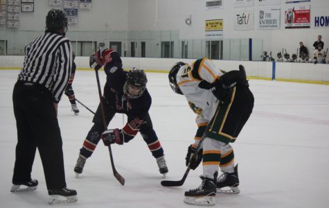 Hockey team scores successful season