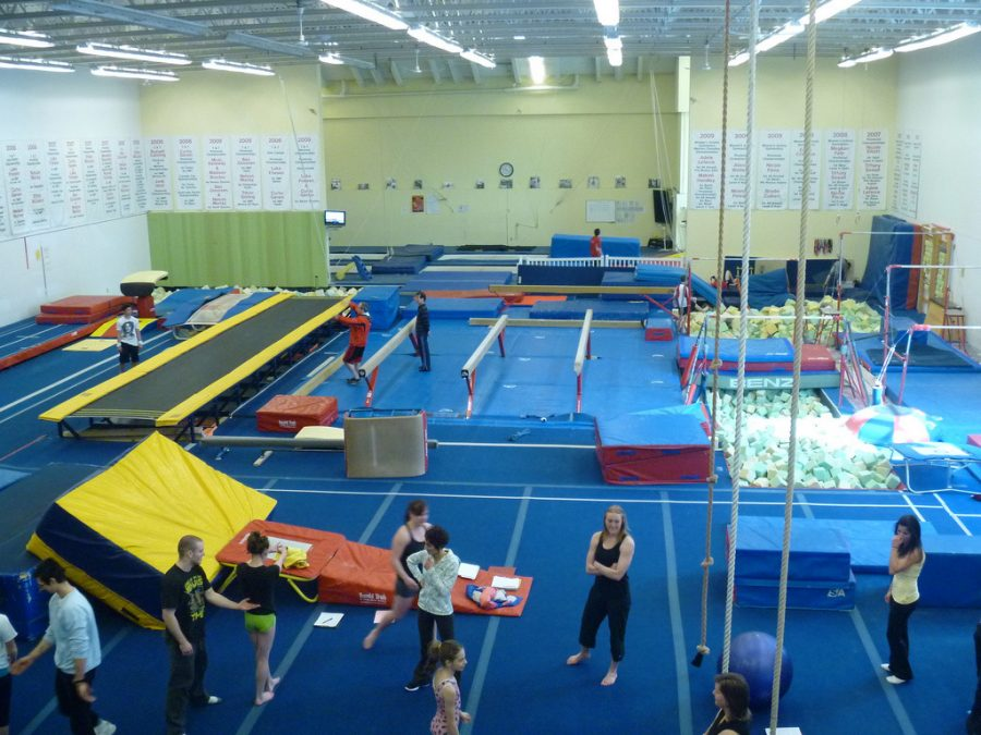 Gymnastic ninjas: seniors part time job teaches respect through discipline