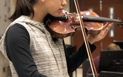 Solo and Ensemble to showcase student talent