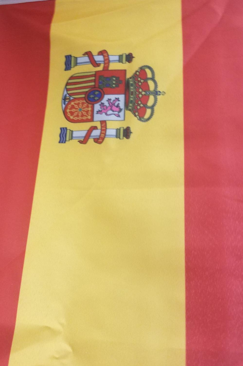 The Spain flag hangs in the classroom. The flag symbolizes the culture that students will be learning about in Spanish V Honors Dual Credit.