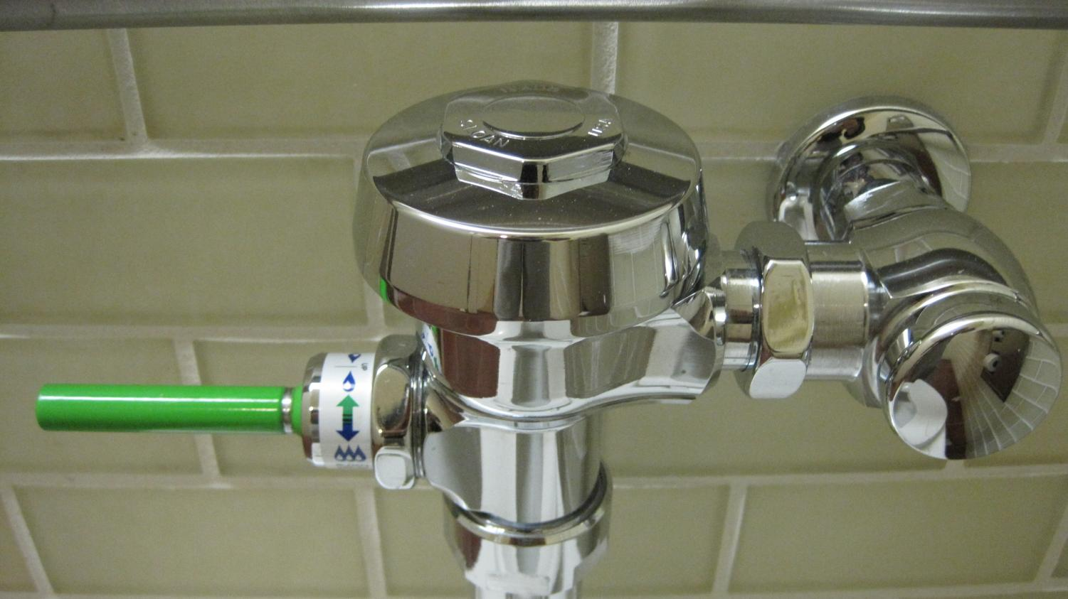 A dual-flush toilet handle.  Although these types of handles can save the district money on their water bills, the costs of having them installed is also a major factor.